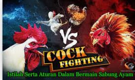 Sabung ayam indonesia