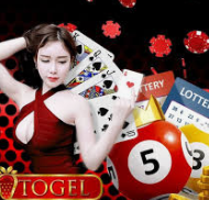 taruhan togel sdney